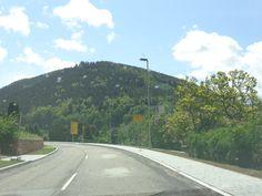 ...durch den Schwarzwald cruisen