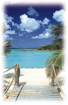 #Aruba - Vacation and Travel Information