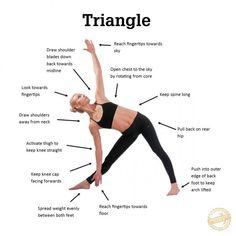 trikonasana  triangle pose yoga yoga muscles vinyasa yoga