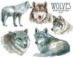 Wolf clip art aquarelle clipart Digital image loup par YesFoxy
