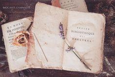 Lavender time -brocante-charmante