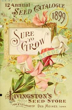 1899 seed catalog.  Favorite Winter reading and planning.  My grandparents searched for the oddest veggies to grow.  A little 'fun' in the otherwise rigorous farm life.