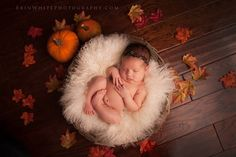 Please view photographers watermark for artist. Fall Newborn Pictures, Fall Baby Pictures, Newborn Baby Photos, Fall Newborn Photography, Cute Babies Photography, Baby Christmas Photos, Newborn Halloween, Newborns, Artist