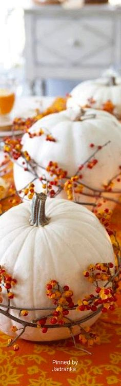 White Gourds Rustic Orange Leaves Harvest Porcelain Pumpkins Assorted Sizes Set of 3