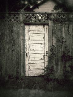 [daily dose of imagery] 10.14.12    Old Door || Samsung Galaxy S3