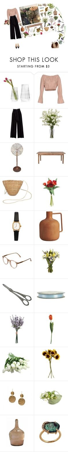 """""""The Florist"""" by silentmoonchild ❤ liked on Polyvore featuring fferrone design, MSGM, Bottega Veneta, Home Decorators Collection, American Apparel, CB2, Cutler and Gross, Mont Blanc, John Lewis and Garden Trading"""
