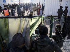 Reino Unido já recebeu perto de 200 menores da «Selva» de Calais