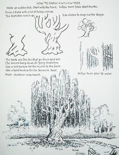 Quick Sketch: How to draw a Willow Tree