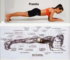 7 exercícios que vão transformar o seu corpo   Diário de uma Dietista