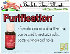 Sanitizer, reduce odors, insect repellent, kills bacteria, fungus, mold