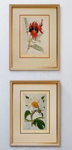 Botanic garden http://www.roommy.ru/catalog/frames/Botanic/