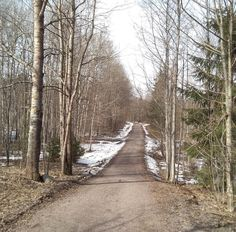 A while ago, when I was on a long walk with . Finland, Walking, Country Roads, Kitty, Snow, Nature, Photography, Outdoor, Instagram