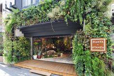 グリーン(観葉植物)とインテリアを掛け合わせ新しい価値を創造するPIANTA×STANZA(ピアンタスタンツァ)