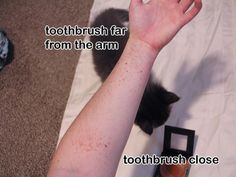 Toothbrush Freckle tutorial>>> OMG THIS IS GENIUS I MUST TRY                                                                                                                                                                                 Mais
