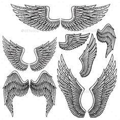 Set of Monochrome Bird Wings of Different Shape - Animals Characters Download here : https://graphicriver.net/item/set-of-monochrome-bird-wings-of-different-shape/19627950?s_rank=134&ref=Al-fatih