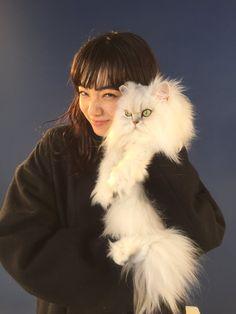 小松菜奈 / loves cats,she finds a stray cat and takes her in