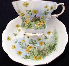Susan    Introduced:    Description: Yellow Floral    Cup Shape: Lyric, Montrose