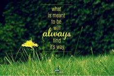 When it's meant to be... quotes