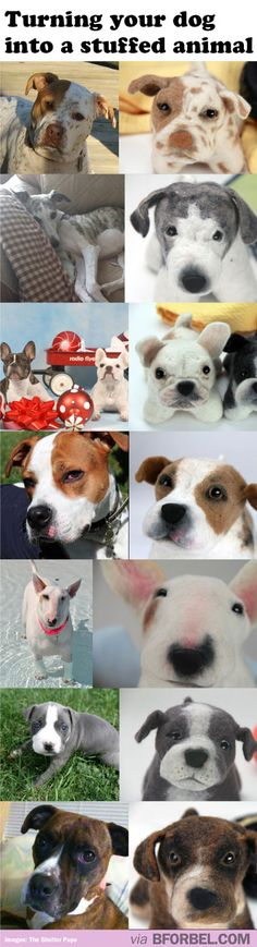 This website turns your dog into a stuffed animal! Proceeds support Shelters and Rescues! I will do this for my Annie Grace.