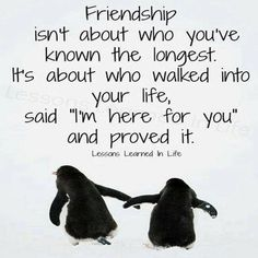 #cute #friendship #quotes #sayings