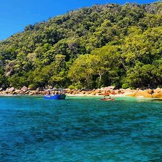 Who wants to on Fitzroy Island today? pic by Danielgatt www.fitzroy-island.com.au #fitzroyisland #exploreTNQ