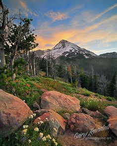 Mount Hood National Forest, Oregon.