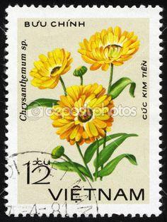 菊花花。越南的邮票 — 图库图片 #10043238