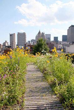 La mayoría de la gente vive en grandes ciudades donde es difícil conseguir la ansiada casita unifamiliar con jardín. Pero si vives en un ...