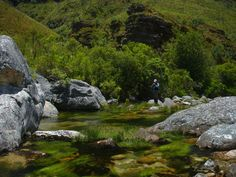 witels river - Google Search Rivers, Westerns, Cape, Golf Courses, Waterfall, Google Search, Outdoor, Mantle, Outdoors