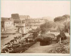 Italia, Roma. Il Colosseo  Circa 1875