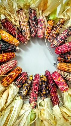 I love to decorate with Indian corn - it has the beautiful colors of fall that I love so much! Growing Vegetables, Fruits And Vegetables, Wine Recipes, Real Food Recipes, Flint Corn, Glass Gem Corn, Popcorn Seeds, Tree Sketches, Succulent Gardening