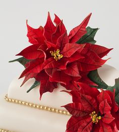 poinsettia sugarpaste video.....  BEST  POINTSETTIA  TUTORIAL I HAVE FOUND, FABULOUS