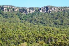This is part of the Illawarra escarpment mentioned in the book.
