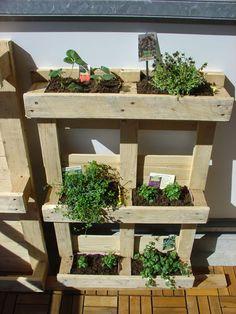 Suttnerblog. Ökostrom, Klimaschutz, Urban Gardening: Für florale Hochstapler: Wir bauen uns einen vertikalen Garten.