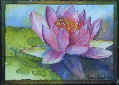 Miniature Watercolor Art - Water Lily by Ross Barbera.