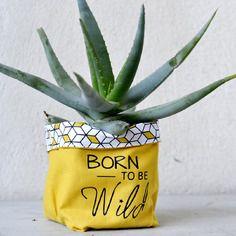 Petit pochon tissu - cache-pot - cactus - born to be wild