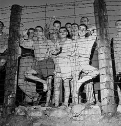 Prisoners at Buchenwald gaze from behind barbed wire during the camp's liberation by American forces, April 1945.