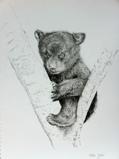 sketching bear cubs | Bear Cub Sketch