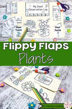 Are you looking for a fun, engaging approach to teach your students about plants? This science interactive notebook is a great hands-on way to teach kids about flowers, seeds, trees, & more. These printable worksheet activities for Kindergarten, 1st, & 2nd Grade Elementary kids are fun for students to create. Templates included in this lapbook pack is graphic organizers, writing prompt, research booklet, facts book, vocabulary, labeling, life cycle and more! Primary Science, Elementary Science, Science Classroom, Spring Activities, Kindergarten Activities, Educational Activities, Teaching Kids, Teaching Resources, Printable Worksheets