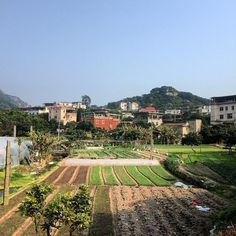 Xiamen, village in Dongping mountain area