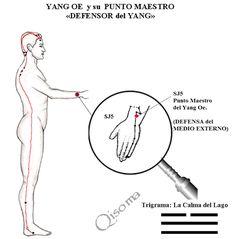Aplicación de las energías del cuerpo (qi) para recuperar la salud
