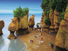 Hopewell Rocks, Bay of Fundy, Canada (© Tourism New Brunswick, Canada) Canada Tourism, Canada Travel, The Places Youll Go, Places To Visit, Canada Cruise, Parks, New Brunswick Canada, Hidden Places, Vacation Deals