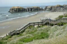 Top 10 wild attractions in Coos County: Wild about Oregon coast   OregonLive.com