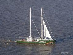 Se trata del sucesor de dos barcos anteriores que llevaban el mismo nombre (Rainbow Warrior y Rainbow Warrior II).    © Greenpeace Argentina / Martín Katz