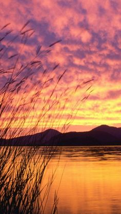 ~~Sandpoint, Idaho Sunset on Lake Pend Oreille by Mark Gibson~~                                      _____________________________ http://www.sandpointchamber.org/