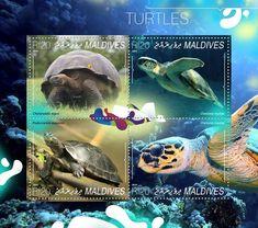 Post stamp Maldives MLD 14806 aTurtles (Chelonoidis nigra, Chelonia mydas, Podocnemis expansa, Chelonia mydas)