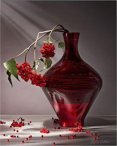 Still Life - Still Life Photography, Fine Art Photography, Still Life Fruit, Rose Vase, Fruit Painting, Still Life Photos, Art Plastique, Ikebana, Flower Designs
