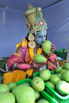 .Krishna checking mangos