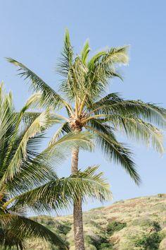 A Quick Guide To Oahu, Hawaii | theglitterguide.com