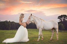 Maternity photoshoot with horse
